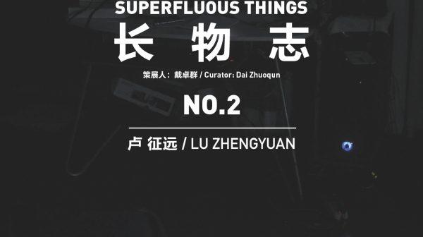 SUPERFLUOUS THINGS NO.2 Lu Zhengyuan